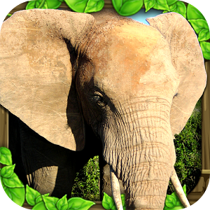 Elephant Simulator apk android